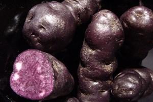 maori_potatoes