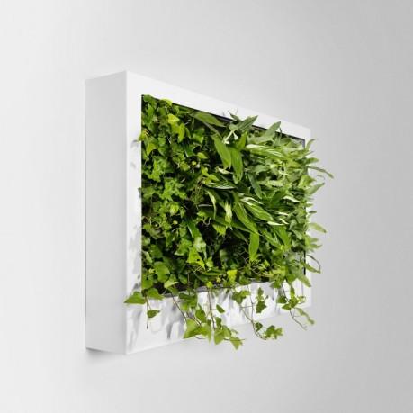 greenworks1